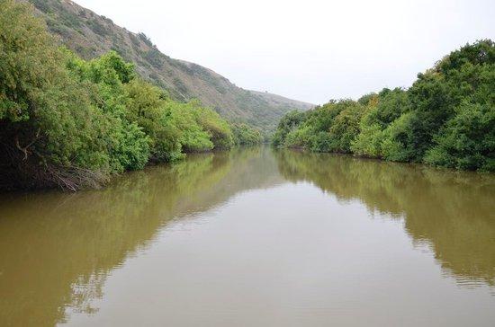 """Woodbury Lodge: Bushman's River boat """"drive"""""""