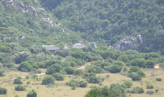 Woodbury Lodge nestled in the bush