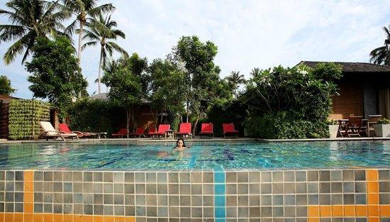 Tango Luxe Beach Villa: Piscine commune