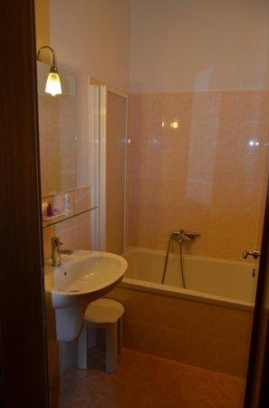 Hotel San Luca: El baño, limpio y comodo