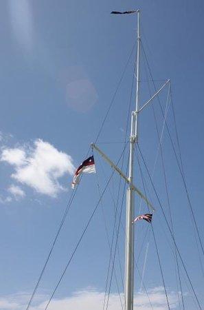 Waitangi Treaty Grounds: Famous flag pole