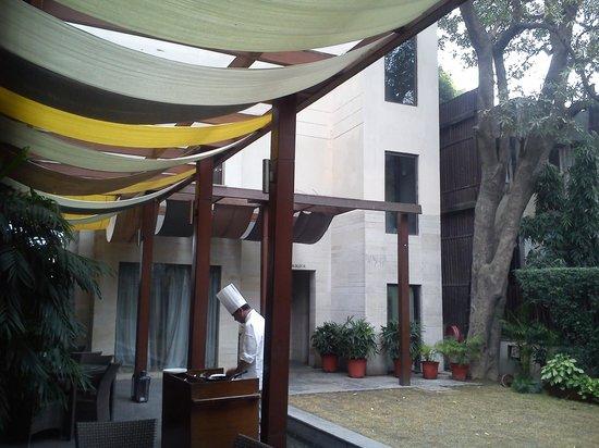 The Visaya: Egg station at backyard