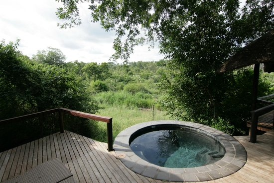 Londolozi Tree Camp: View off our deck w/ hot tub