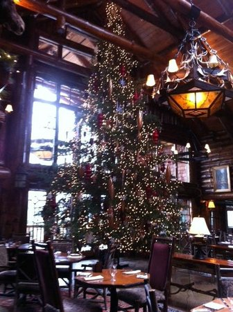 The Whiteface Lodge: beautiful Christmas tree in Kanu!