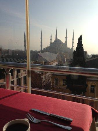 Lady Diana Hotel:                   Вид из ресторана