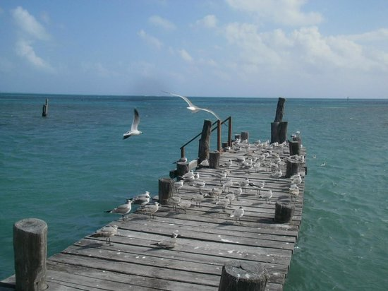 Ocean Spa Hotel: Mucha paz!!