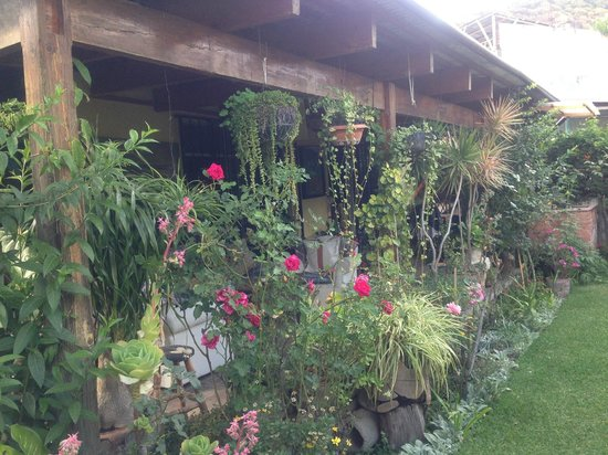 Jenna's River Bed and Breakfast: Lots of green and flowers