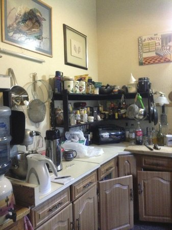 Jenna's River Bed and Breakfast: kitchen