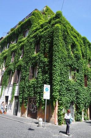 Hotel San Pietro: Путь в отель!