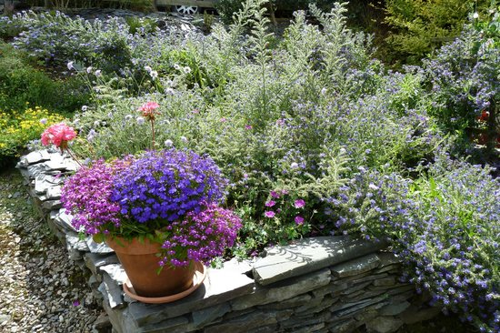 Pen Y Garth: The beautiful garden