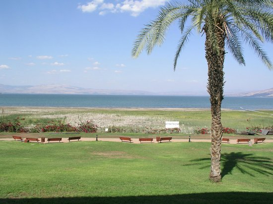 Kinneret, Israel: The beautiful view.
