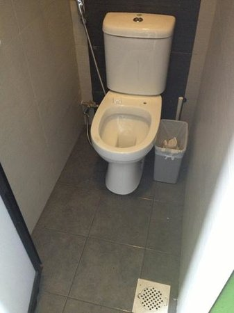 The Green Kiwi Backpacker Hostel: shared toilet