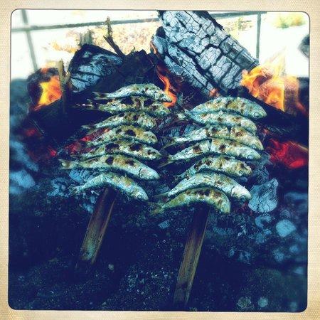 Pepe Oro Bar Restaurant: Sardines Pepe Oro