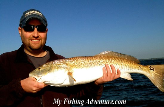 My Fishing Adventures: Apalachicola Fishing Charters
