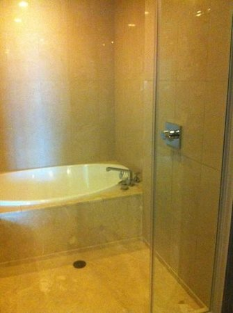Red Rock Casino Resort & Spa: the shower