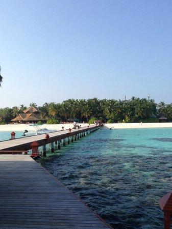 반얀 트리 몰디브 사진