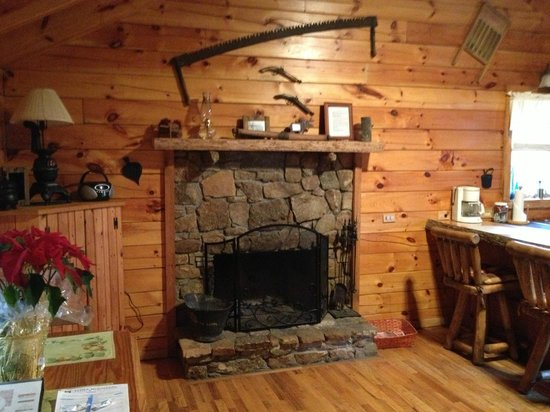 ‪‪Lydia Mountain Cabins‬: Fireplace