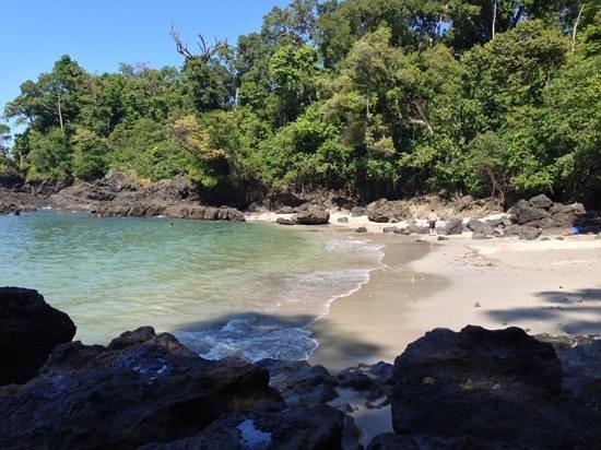 Hotel San Bada:                   пляж в Мануэль Антонио парк