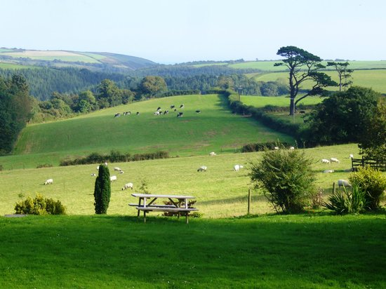 East Trenean Farm Luxury Holiday Barns: View from here down the valley to the coast
