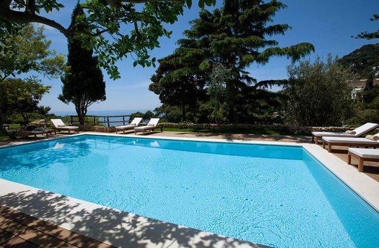 La Minerva: pool3
