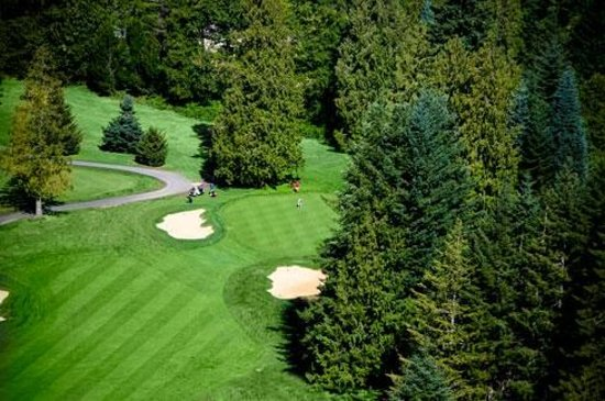 The Courses at The Resort at The Mountain: Aerial view captures fairway and green, surrounded by trees and bunkers.