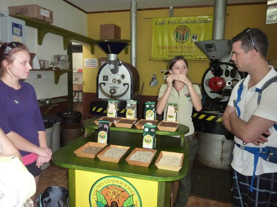 Doka Estate Coffee Tour: Guide explains