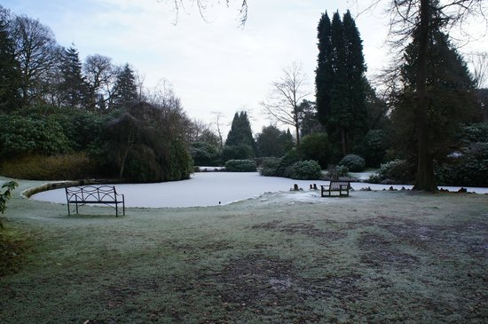 Tatton Park : Frozen Pond