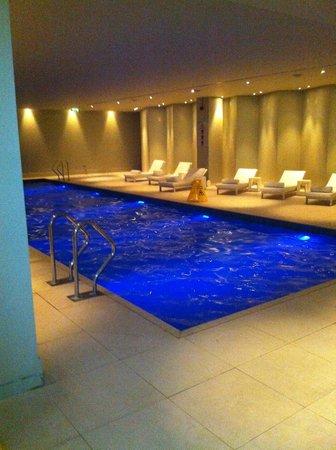 โรงแรมพาร์ค พลาซ่า เวสต์มินสเตอร์บริจด์ ลอนดอน: La piscine