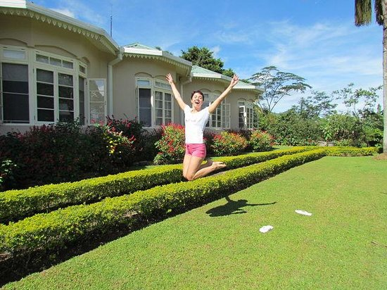 Ceylon Tea Trails: garden view
