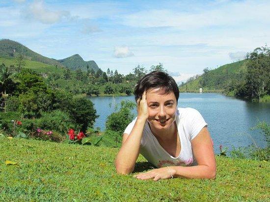 Ceylon Tea Trails: garden
