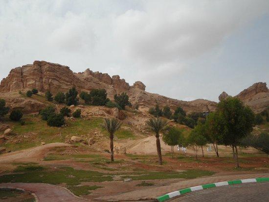 Parque Mubazzara: Green Mubazzara