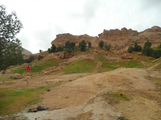 Mubazzara Park: Green Mubazzara