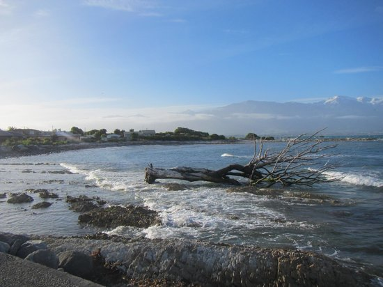 Kaikoura Boutique Hotel: View of Kaikoura from seaside walk
