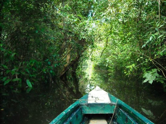 Abundancia Amazon Eco Lodge: A quiet paddle in the rainforest