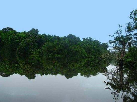 Abundancia Amazon Eco Lodge: The peace and the stillness where the pink dolphins live