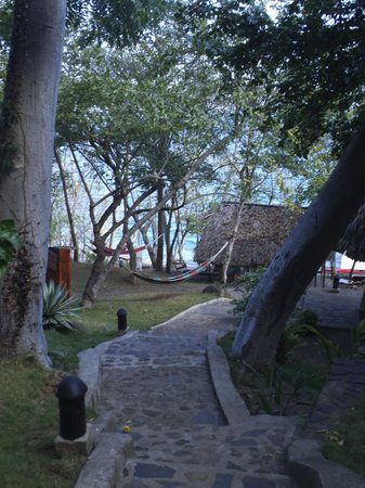 San Simian Eco Lodge: View of the path to la laguna (notice the hammocks!)