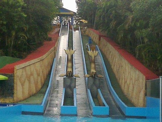 agua show park parque aquatico el tobogn de mrmol