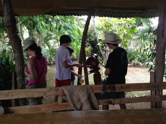 El Toledo Coffee Tour: Kids processing sugar cane to make juice