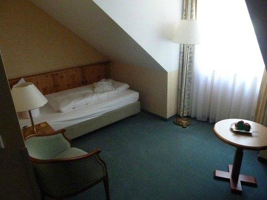 Freisinger Hof Hotel : Single room