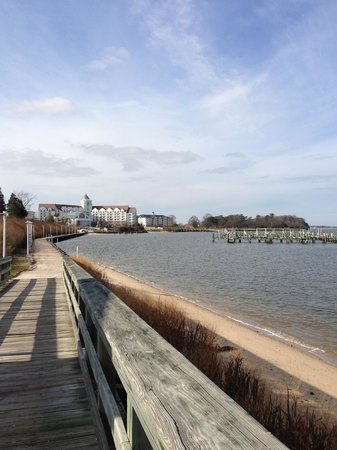 Hyatt Regency Chesapeake Bay Golf Resort, Spa & Marina: Hotel view