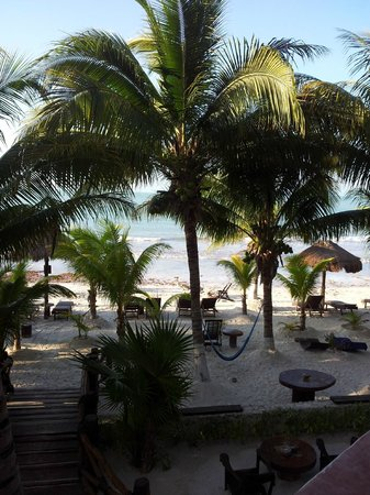 Beachfront Hotel La Palapa: View from our room