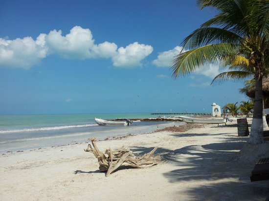 Beachfront La Palapa Hotel Adult Oriented: Hotel beach