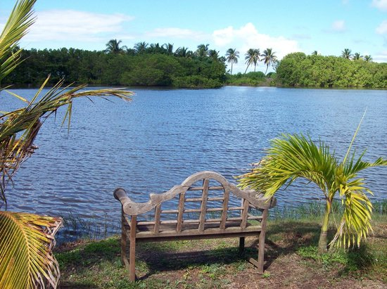 Antigua's Yepton Estate Cottages: Loveseat at the lagoon