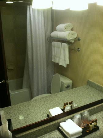 Sheraton Pentagon City Hotel: Room 1120: bathroom mirror reflected view