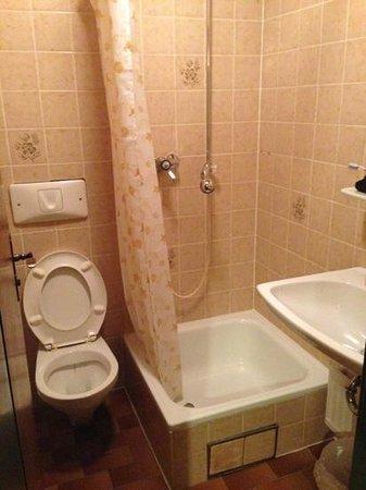 Hotel Almroeserl: il bagno - camera singola