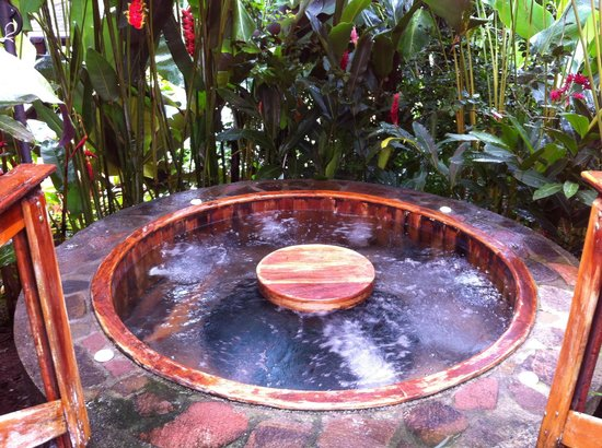 Nayara Hotel, Spa & Gardens: One of 2 or 3 larger hot tubs