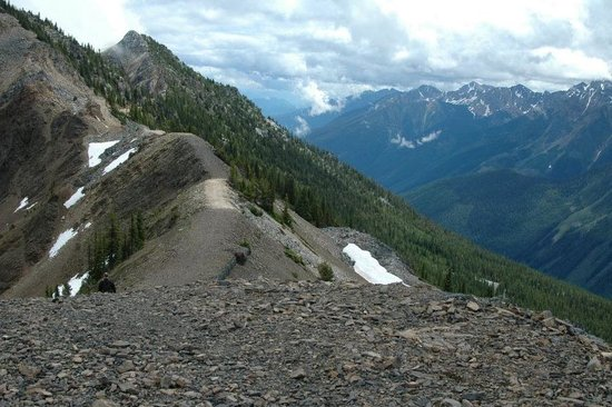 Golden, Canada: Enjoy one of the many ridge hikes from Kicking Horse Mountain Resort