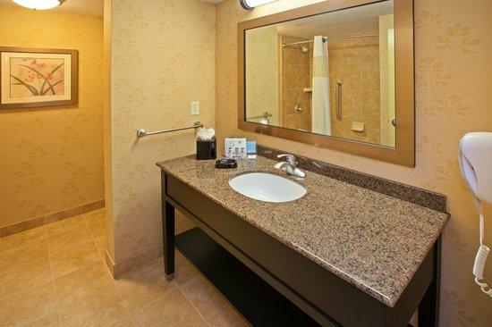 Hampton Inn & Suites Chicago/Mt. Prospect: Bathroom