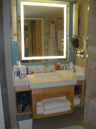 Loews Miami Beach Hotel: bagno