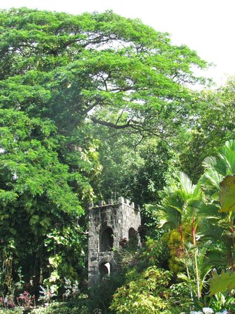 Grey's Island Excursions: Romney Manor-Caribelle Batik